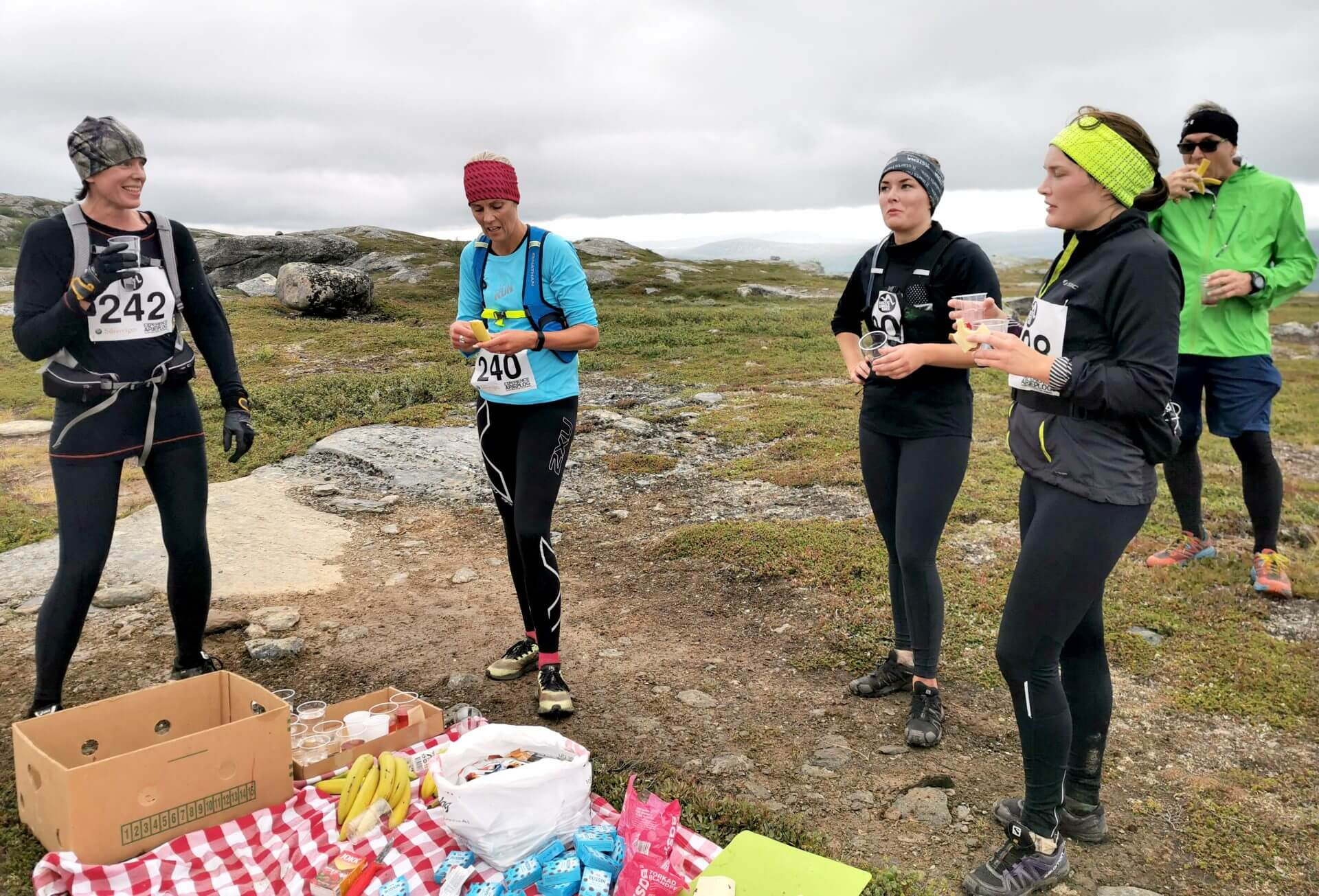 Arctic Circle Race 2019 Polcirkelloppet Guijaure kontr Anna K m fl